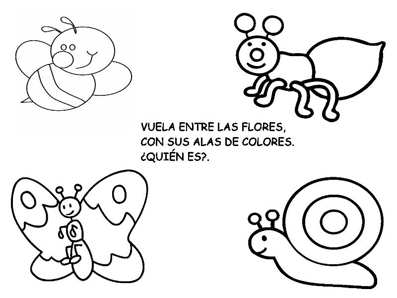 adivinanza mariposa   Rincón de infantil