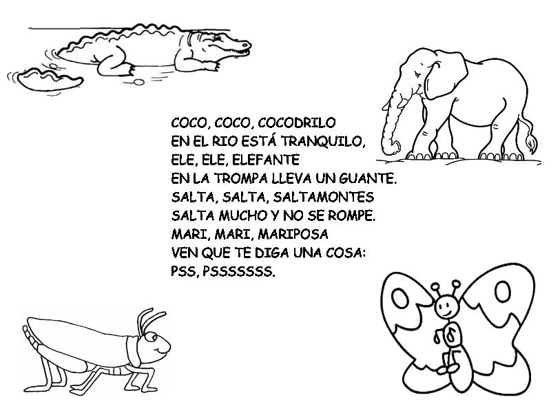 libro sobre animal: