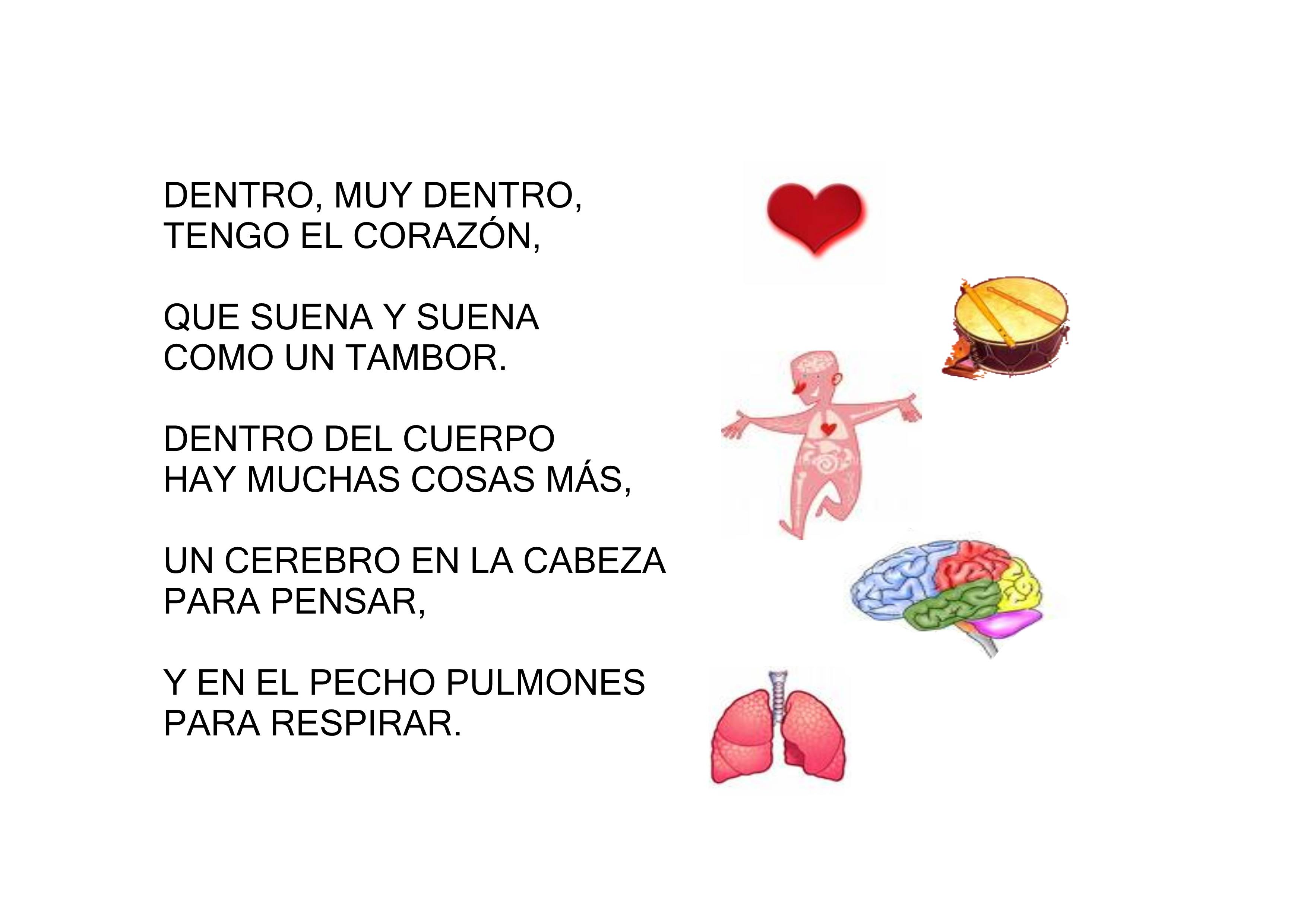 POESIA ÓRGANOS INTERNOS   Rincón de infantil